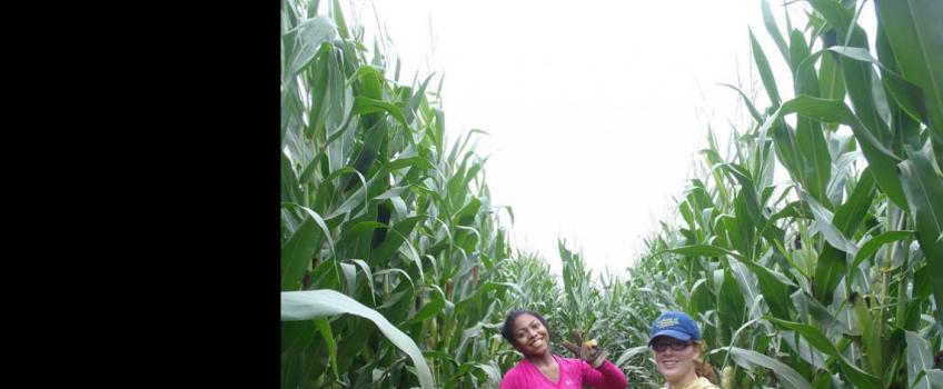Frosh Trip Farming